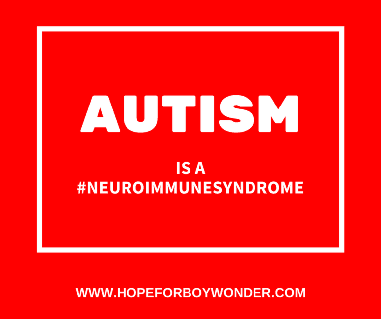 Autism is a Neuroimmune Syndrome